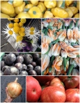71812 Farmer's Market Collage