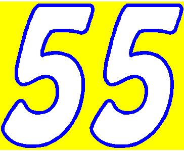 55b_2COLOR_nascar