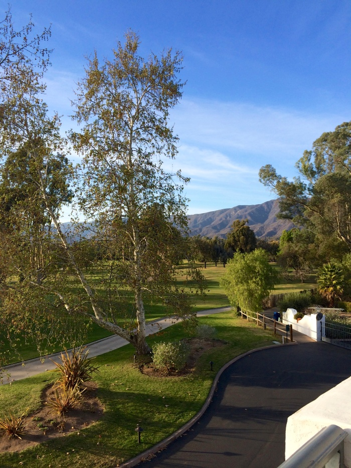 Ojai Valley Inn Room View