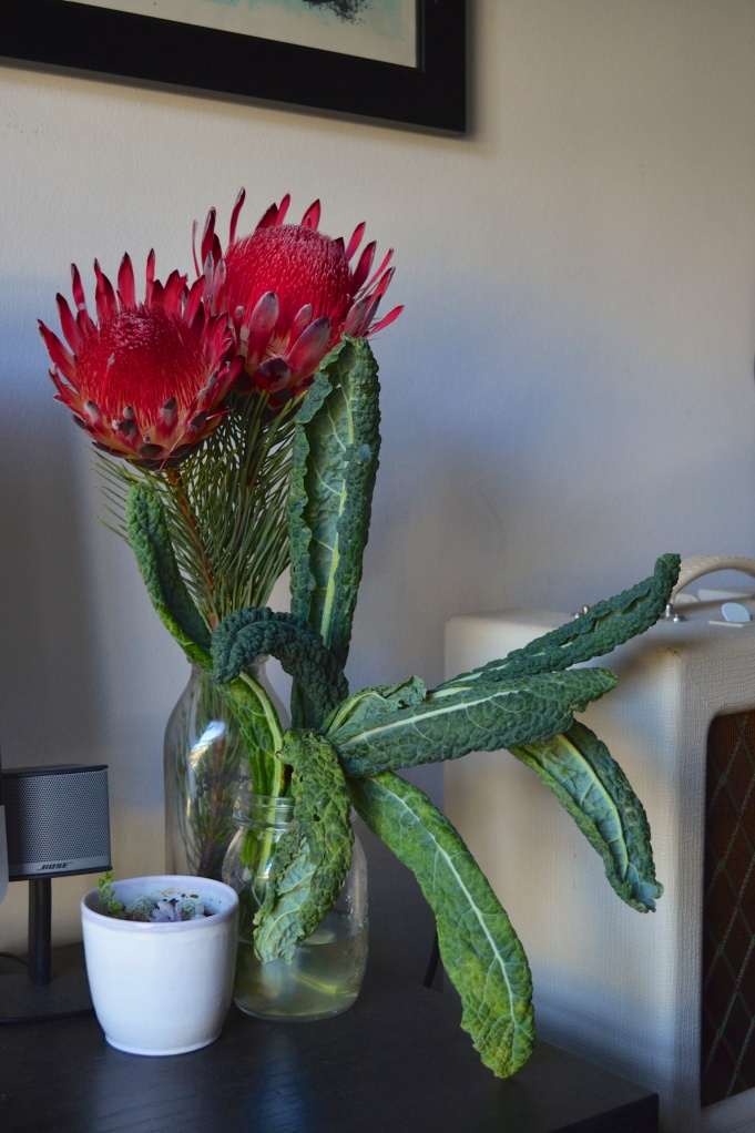 Kale arrangement with protea